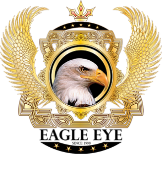 Eagle Eye Video