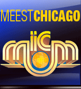 Meest Chicago Shipping LLC